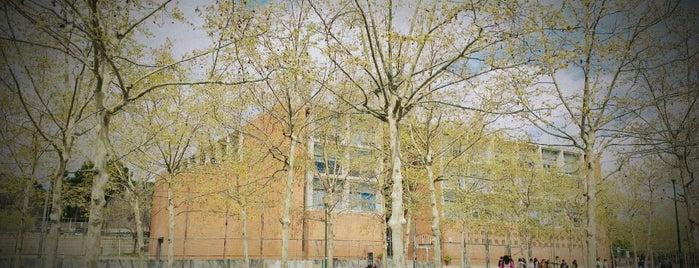IES La Mallola is one of Barcelona Schools.