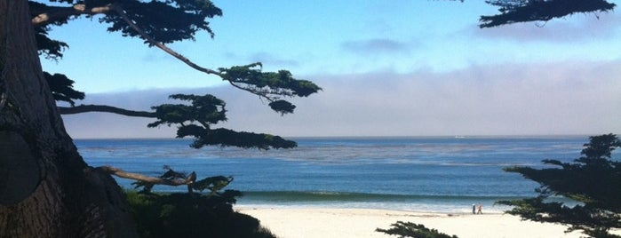 Carmel Beach City Park is one of Day Trips.