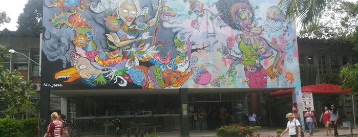 CE - Centro de Educação is one of ~urban conceitual~.