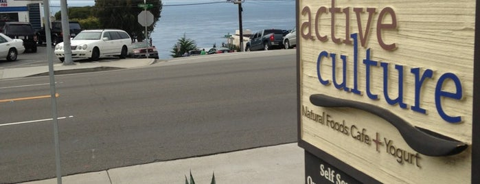 Active Culture Yogurt And Health Bar is one of The 15 Best Places for a Healthy Food in Laguna Beach.