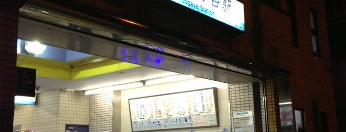 Idogaya Station (KK42) is one of Station - 神奈川県.