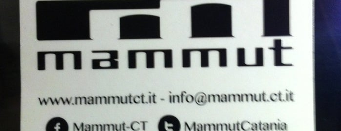 Mammut is one of Where find City Map.