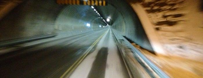Freifjordtunnelen is one of Krifast.