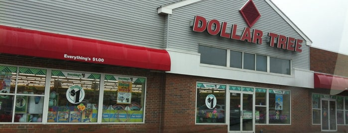 Dollar Tree is one of My Faves.