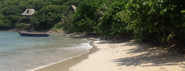 Parque Nacional Natural Tayrona is one of Nos sites <3 !!.