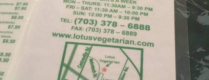 Lotus Vegetarian Restaurant is one of Virigina.