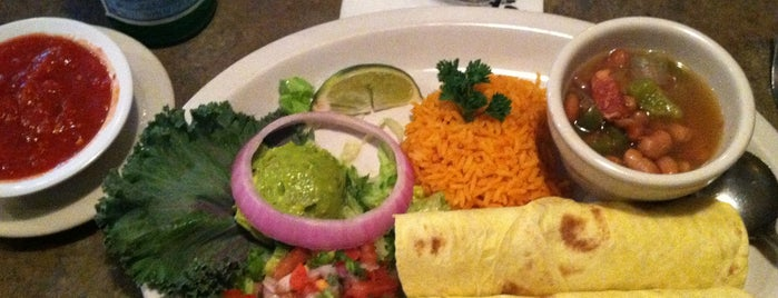 Anamia's Tex-Mex is one of The 15 Best Places for Tex-Mex Cuisine in Dallas.