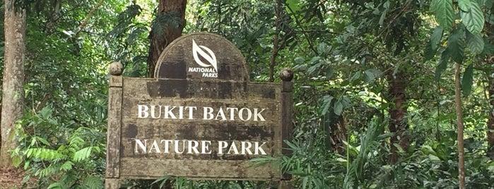 Bukit Batok Nature Park is one of Trek Across Singapore.
