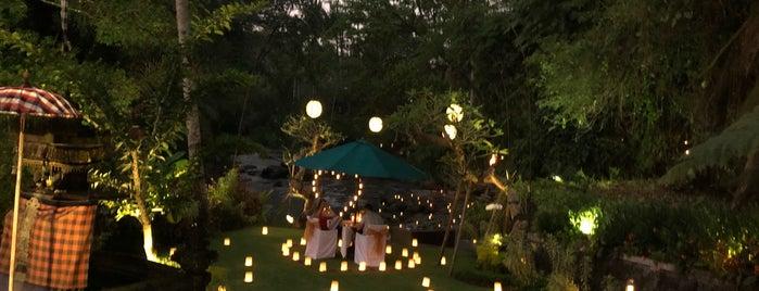 The Samaya Ubud - Bali is one of Tim's Favorite Restaurants & Bars around The Globe.