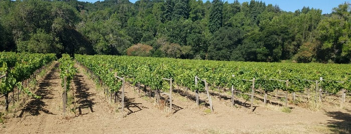 Hendry Winery is one of Napa.