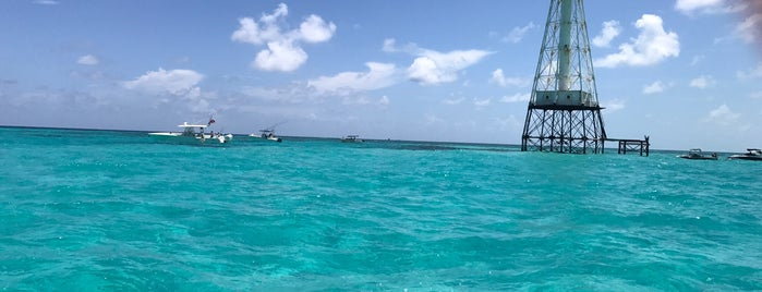 Alligator Reef is one of USA Key West.