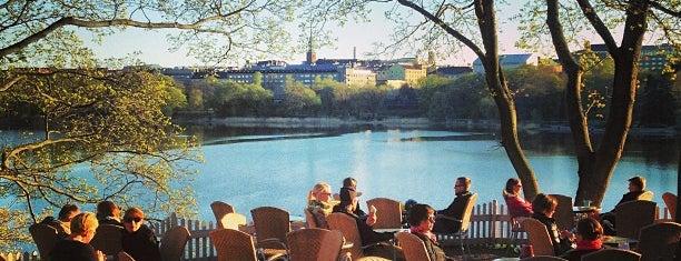 Sinisen huvilan kahvila is one of Helsinki.