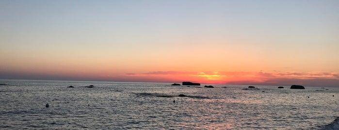 La Sirena Del Mare is one of Ischia.