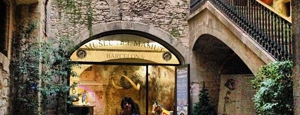 Museo del Mamut de Barcelona is one of Lista Cris B..