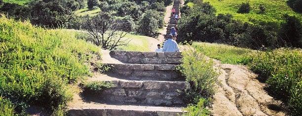 Baldwin Hills Scenic Overlook is one of LA/SoCal.