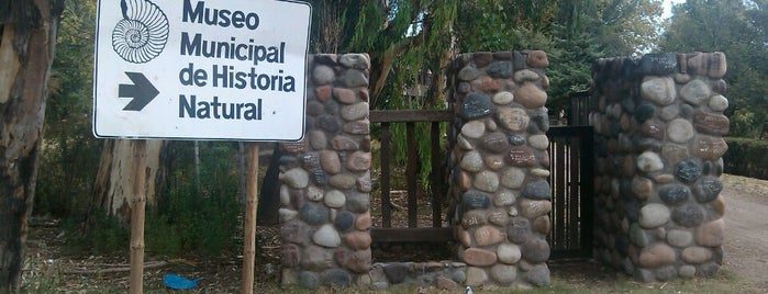 Museo Municipal Historia Natural is one of Cuyo (AR).