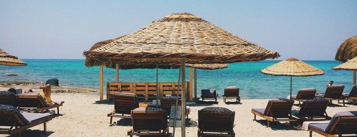 Propaganda Beach & Club is one of Alaçatı'nın En İyileri / Best of Alacati.