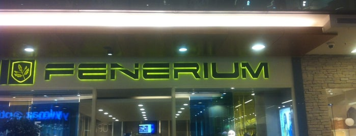 Fenerium is one of Gezelim görelim.