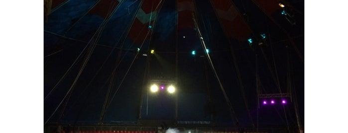 Цирк в Автово is one of Места для посещения с детьми СПБ.