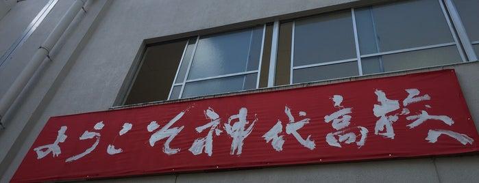 東京都立神代高等学校 is one of 都立学校.