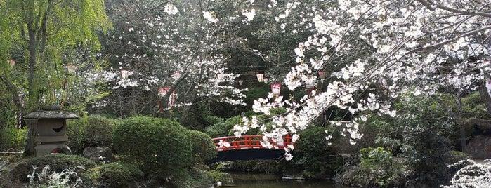 打吹公園 is one of 日本の都市公園100選.
