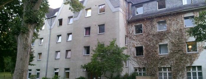 Domäne Walberberg is one of Hotel.