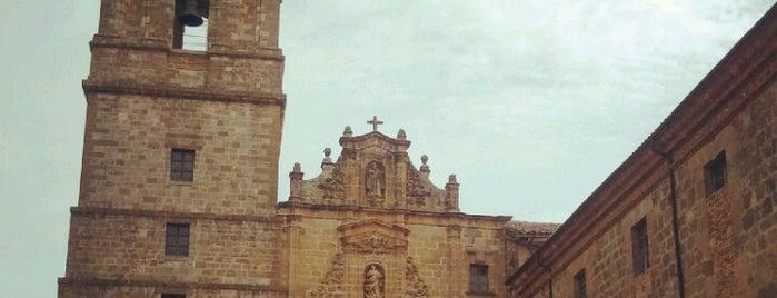 Monasterio De Irache is one of San sebastian.