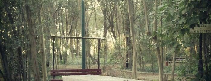 Parque Público de Cortes is one of Lugares interesantes en Tudela y Ribera.