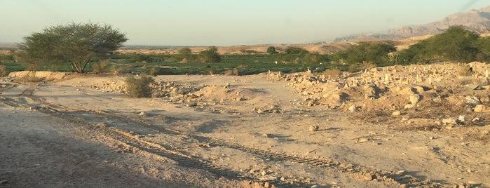 Dead Sea Highway is one of Tafila.