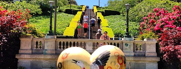 Lyon Street Steps is one of SF Trails & Overlooks.