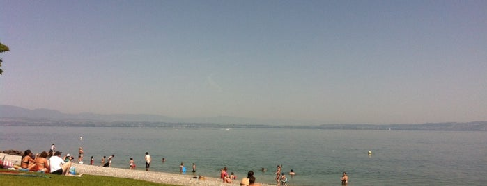 Plage d'Amphion is one of Beach.