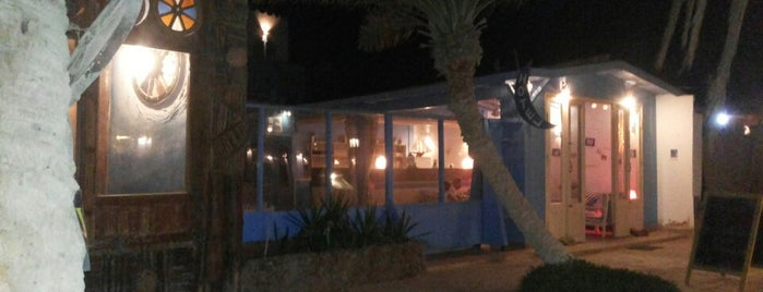 Eel Garden Stars is one of Be Charmed @ Sharm El Sheikh.