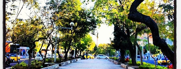 Paseo Chapultepec is one of The 15 Best Places for Dancing in Guadalajara.