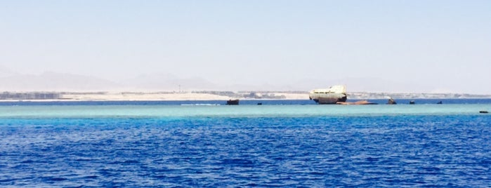 Woodhouse Reef is one of Be Charmed @ Sharm El Sheikh.