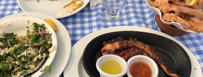 İhtiyar Balıkçı Restaurant is one of Bodrum Bodrum.