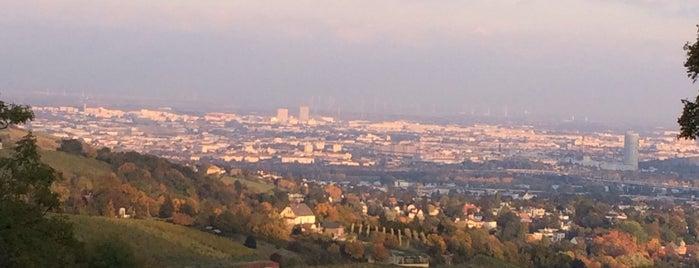 Bellevue Wiese is one of Exploring Vienna (Wien).