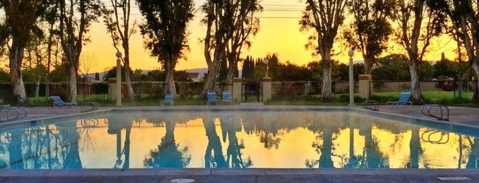 Deerfield Community Pool is one of My favorite places!.
