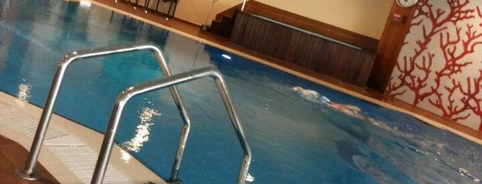 Mövenpick Hotel Izmir Spa&Pool is one of Izmir.
