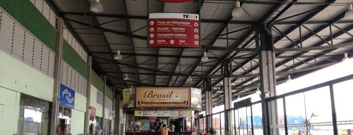 Terminal Rodoviário Internacional de Itajaí (TERRI) is one of Itajaí.