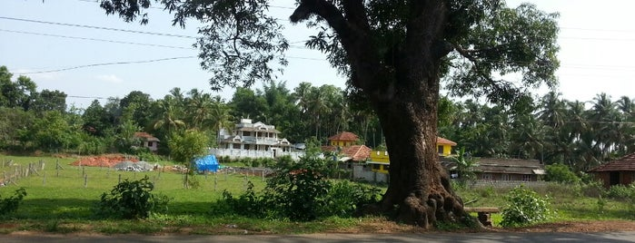 Best places in Palakkad, India