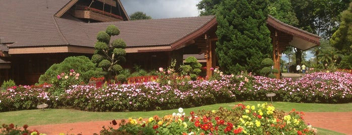 Doi Tung Royal Villa is one of Chaing rai temple.
