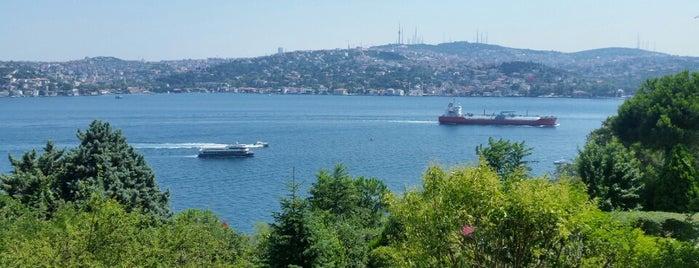 Naile Sultan Korusu is one of İstanbul'daki Park, Bahçe ve Korular.