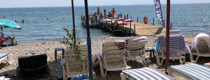 Barbi Cafe & Beach is one of doğallık..