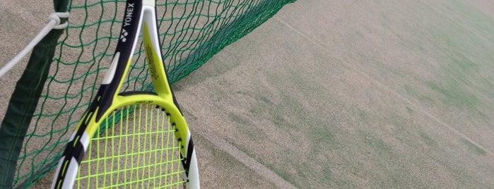 平テニスコート is one of Tennis Court relates on me.