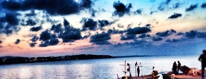Kayıkhane is one of İstanbul.