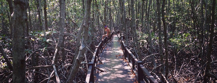 Pranburi National Forest Park is one of Places in the world.