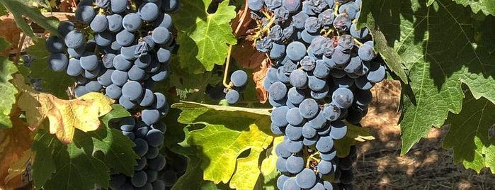 Truchard Vineyards is one of Napa.