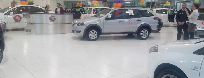 Prima Fiat is one of Dealers.