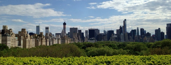 Iris & B Gerald Cantor Roof Garden is one of NYC Manhattan East 65th St+.