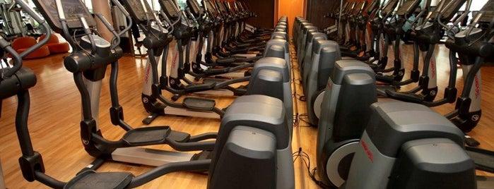 fitness. Black Bedroom Furniture Sets. Home Design Ideas